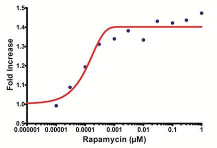 Microplate Rapamycin